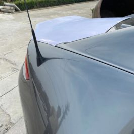 Trunk with ducktail (RF only)